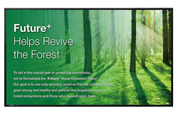 Professional Display
